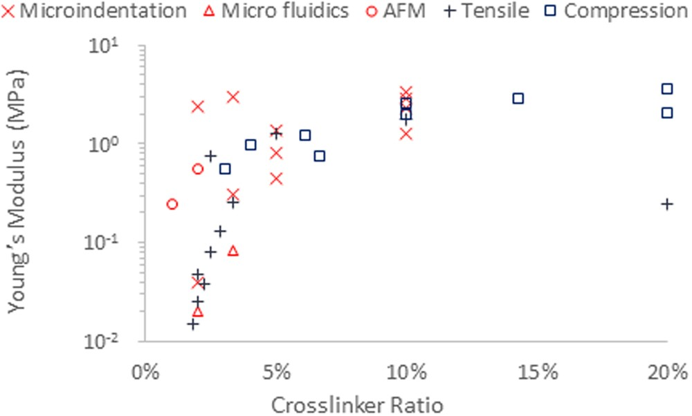 Impact of surface adhesion and sample heterogeneity on the
