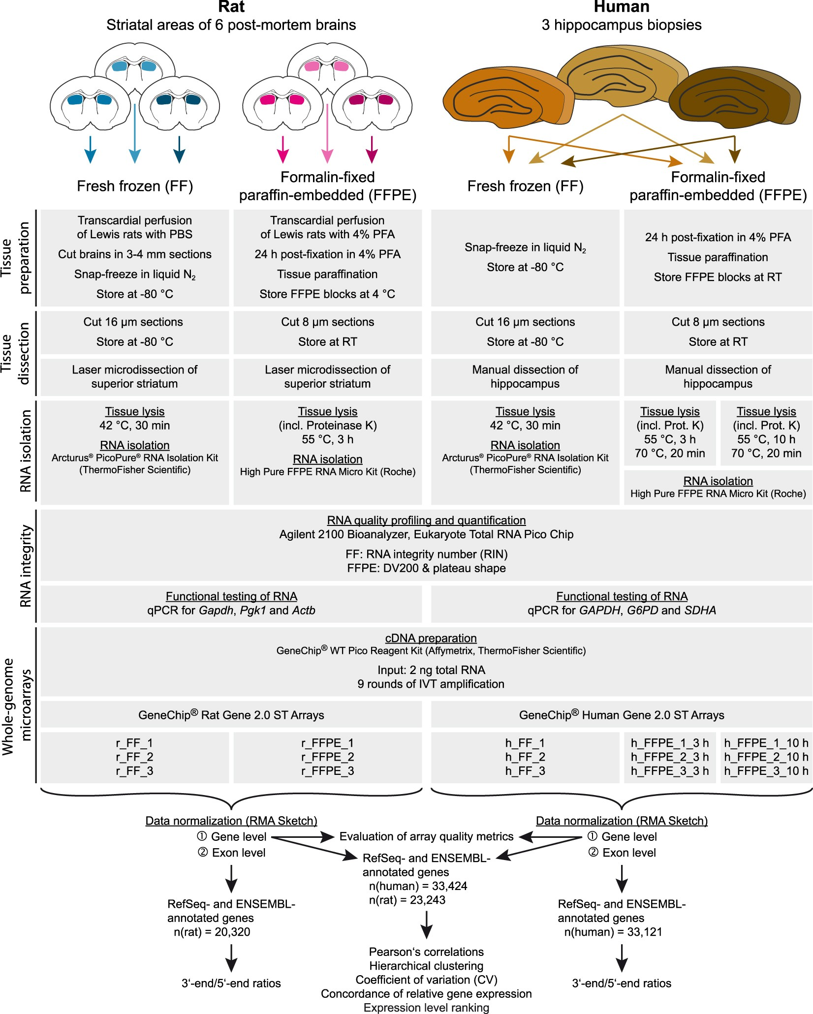 Systematic evaluation of RNA quality, microarray data reliability