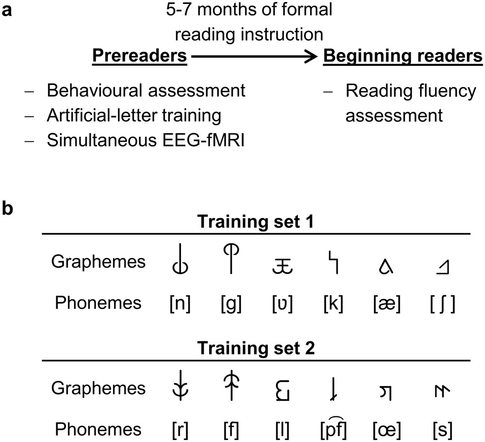 Simulating Reading Acquisition The Link Between Reading Outcome And