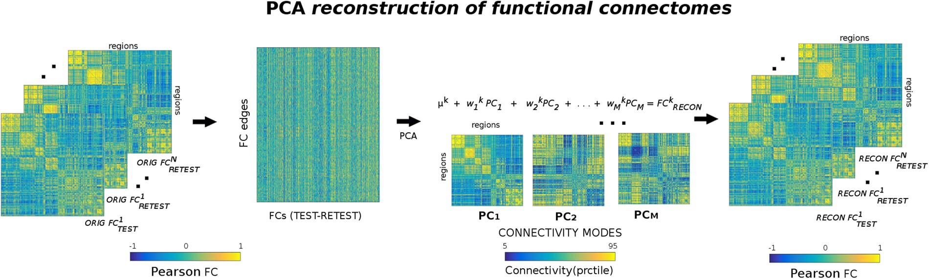 The quest for identifiability in human functional connectomes ...