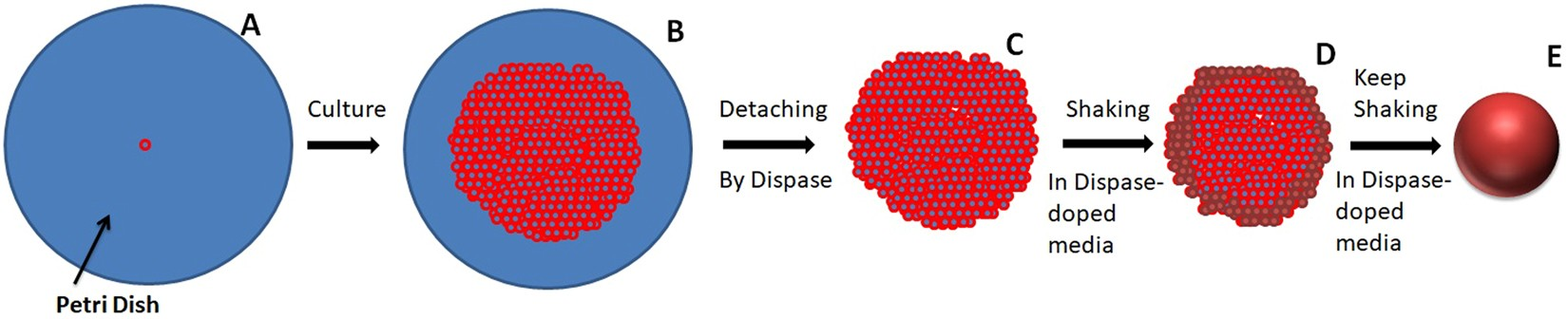 Facile Tumor Spheroids Formation In Large Quantity With