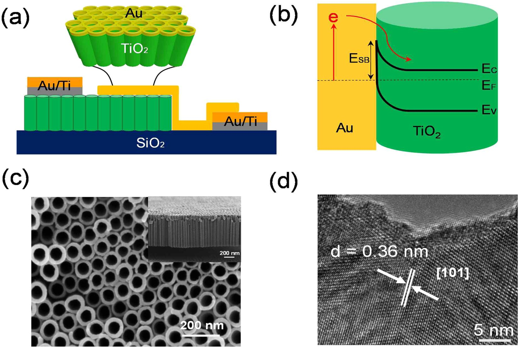 Three Dimensional Hot Electron Photovoltaic Device With Vertically Solar Panel Corrugated Thin Film Cells On Wiring Panels In Aligned Tio 2 Nanotubes Scientific Reports