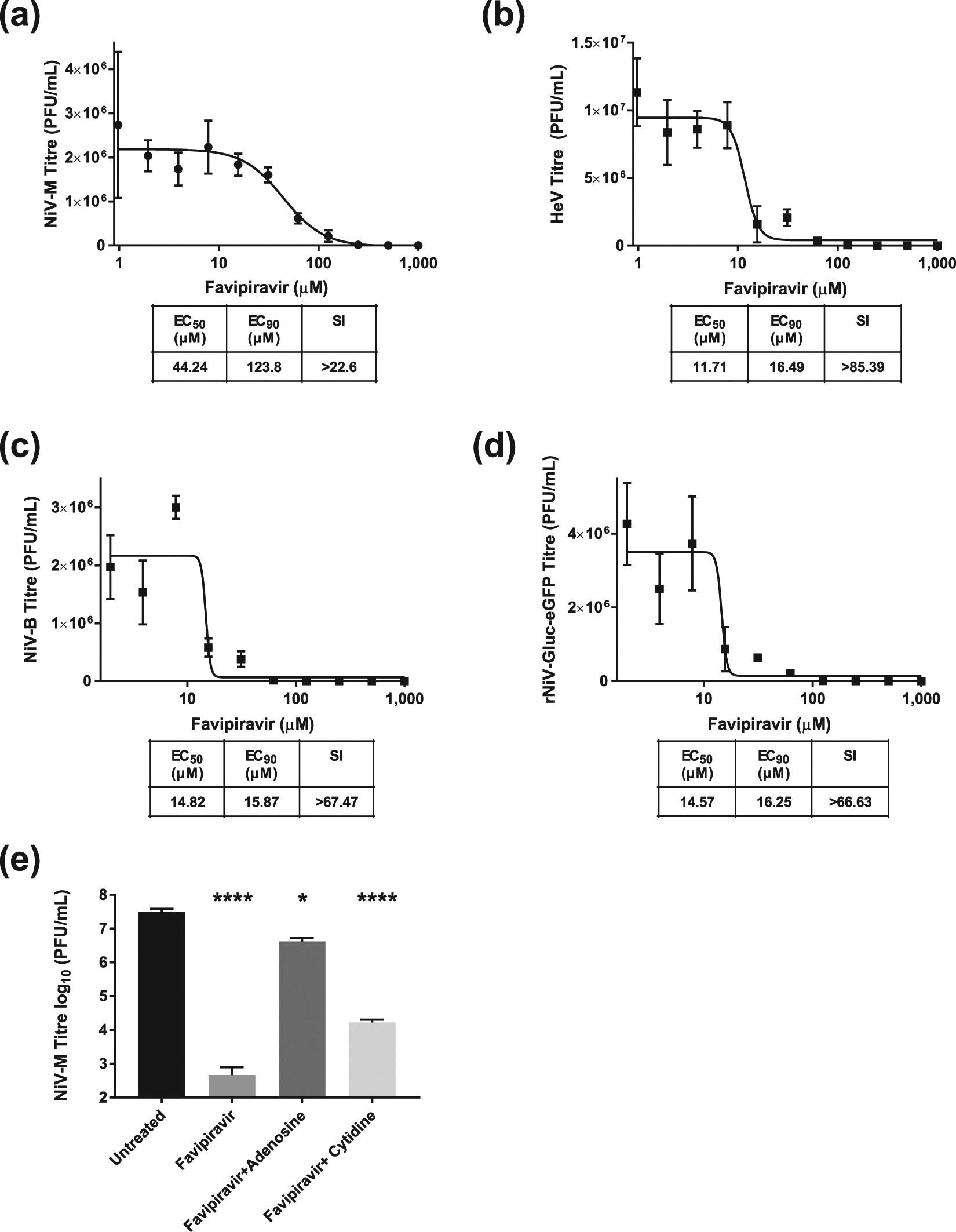 Favipiravir (T-705) protects against Nipah virus infection