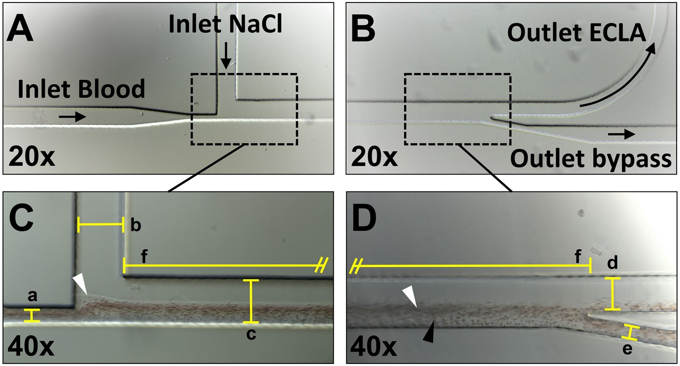 Microfluidic cell sorting: Towards improved biocompatibility
