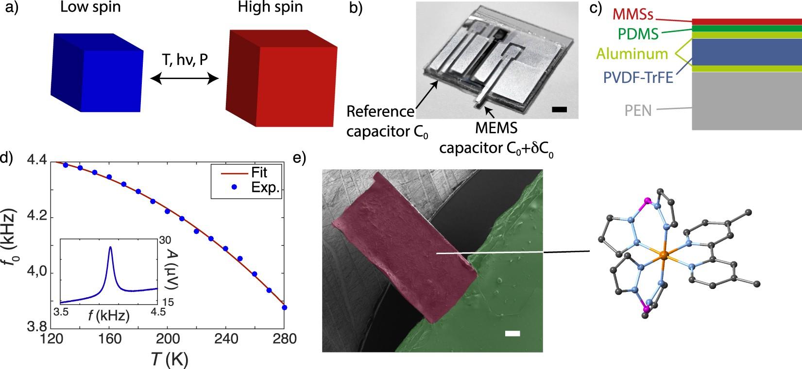 Molecule-based microelectromechanical sensors | Scientific Reports