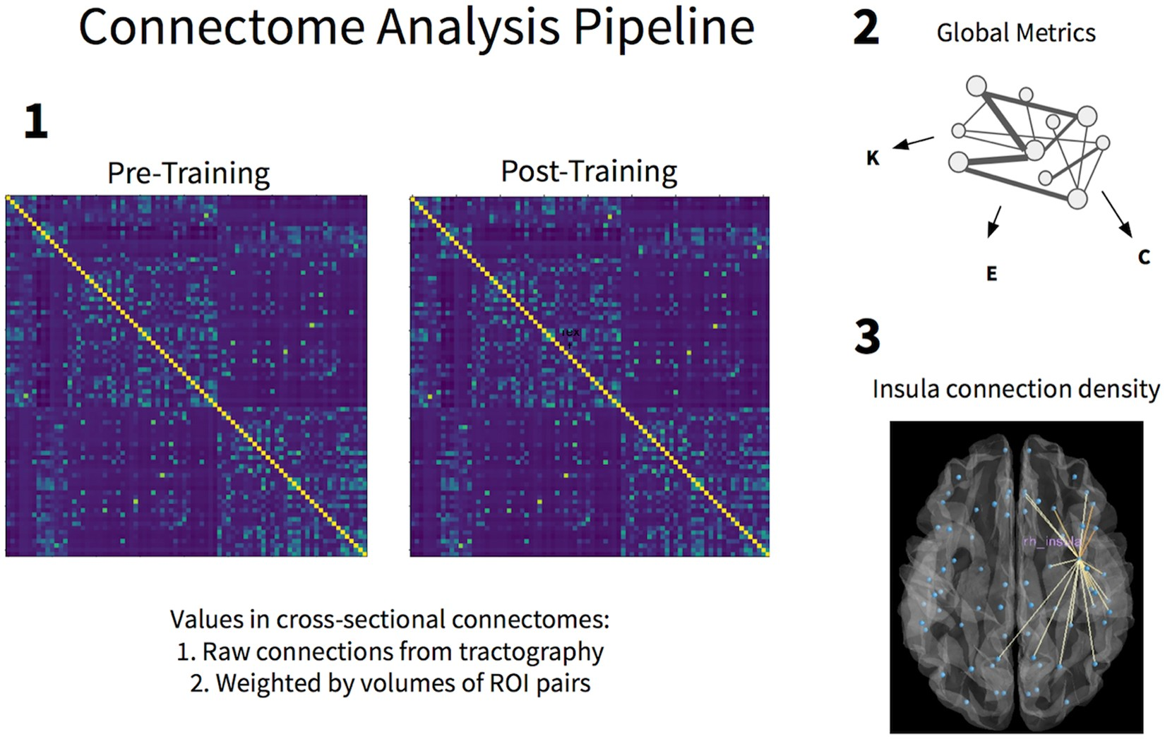Mindfulness Training Induces Structural Connectome Changes In Insula Rj 48c T1 Wiring Diagram Networks Scientific Reports