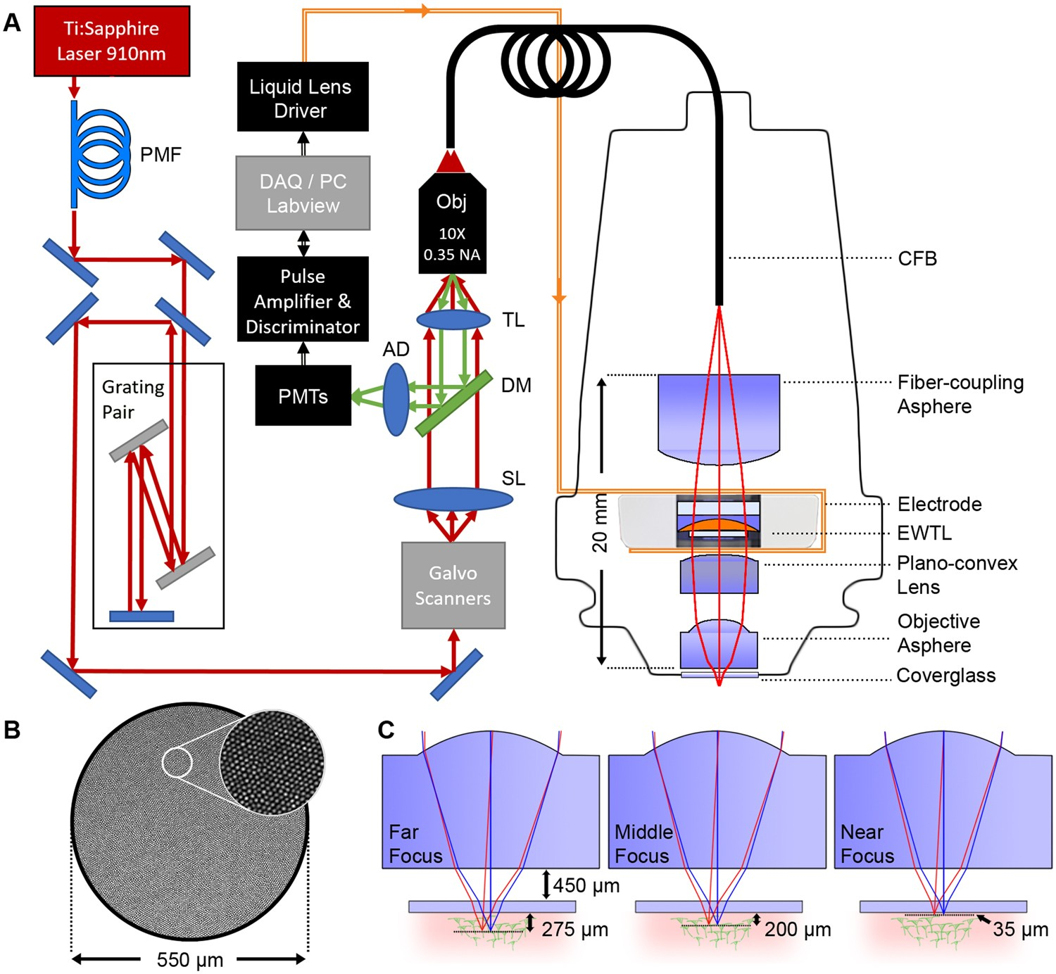 Three dimensional two-photon brain imaging in freely moving mice using a  miniature fiber coupled microscope with active axial-scanning | Scientific  Reports