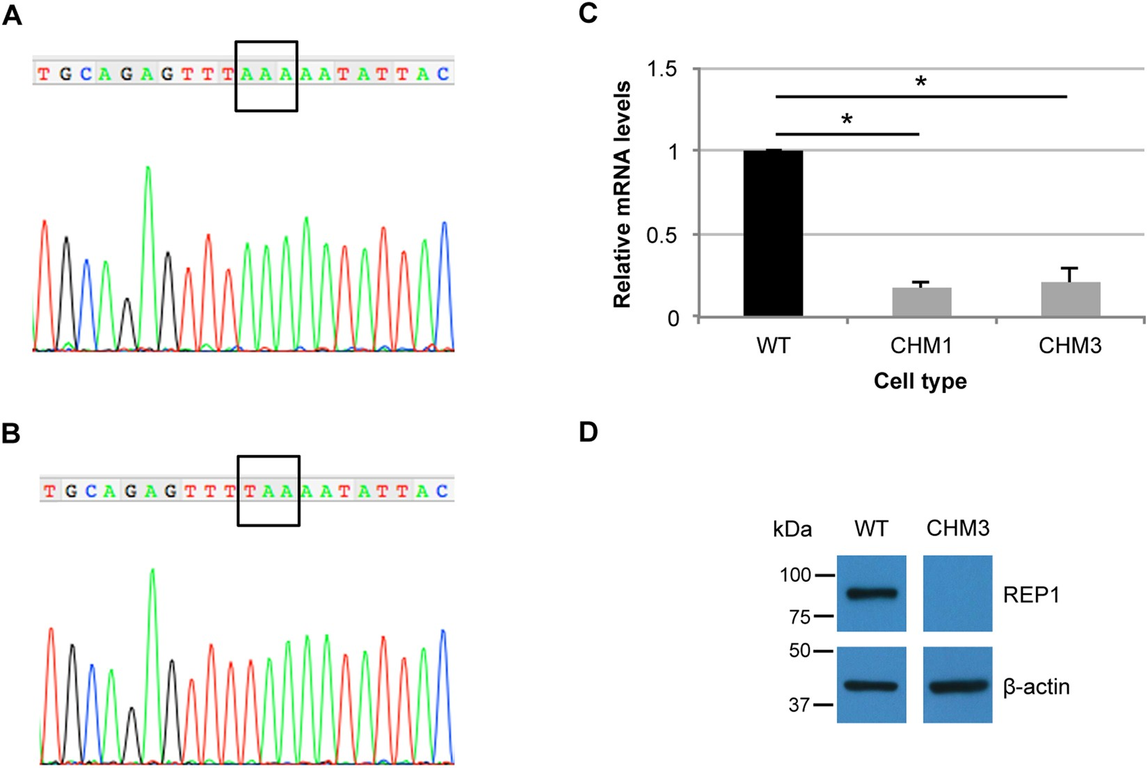 The Effect Of Ptc124 On Choroideremia Fibroblasts And Ipsc Derived For Accessibility Find Equivalent Resistance Rab In Circuit Rpe Raises Considerations Therapy Scientific Reports