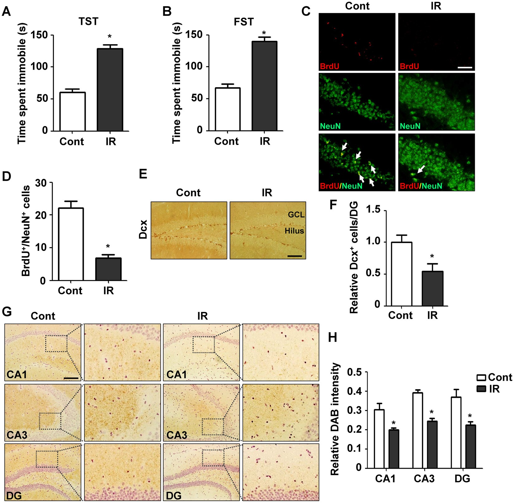 Radiation Induced Overexpression Of Transthyretin Inhibits Retinol Advanced Led Temperature Indicator Electronics Project Mediated Hippocampal Neurogenesis Scientific Reports