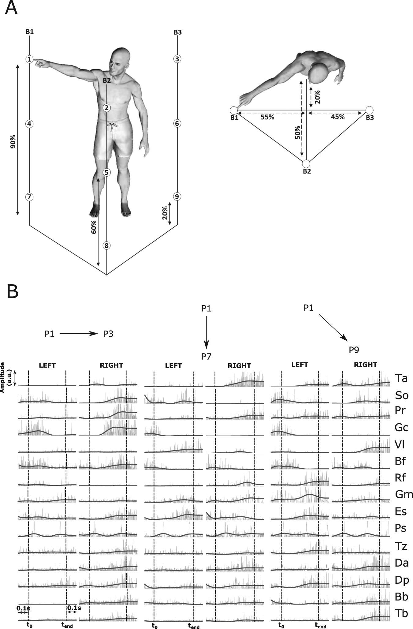 Deciphering The Functional Role Of Spatial And Temporal Muscle Figure 17 Block Diagram For Human Arm Movement Based Emg Signal Synergies In Whole Body Movements Scientific Reports