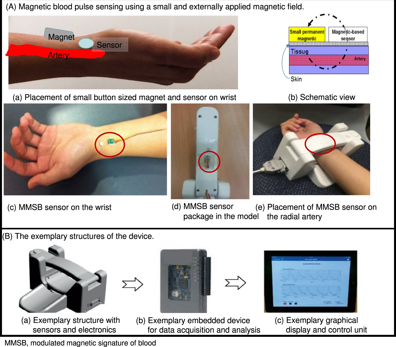 Proof Of Concept Study For An Enhanced Surrogate Marker Ac Magnetic Field Detector Electronic Idea Endothelial Function In Diabetes Scientific Reports