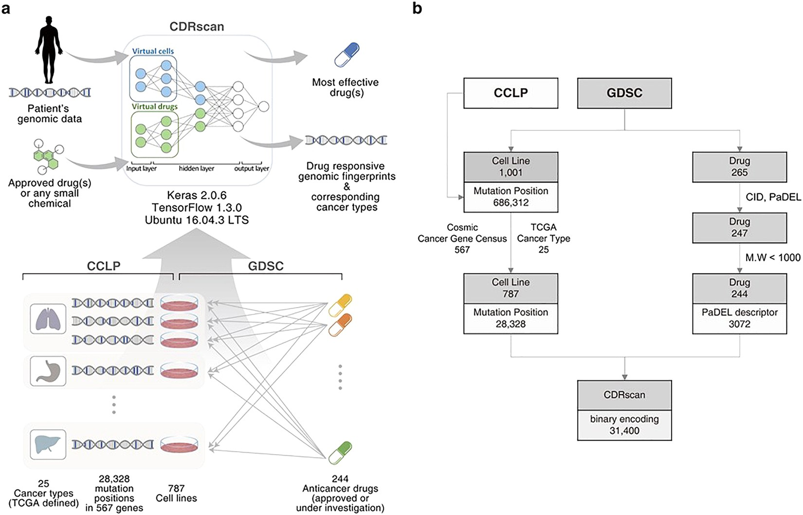 Evidence Linking Chemicals And Learning >> Cancer Drug Response Profile Scan Cdrscan A Deep Learning Model