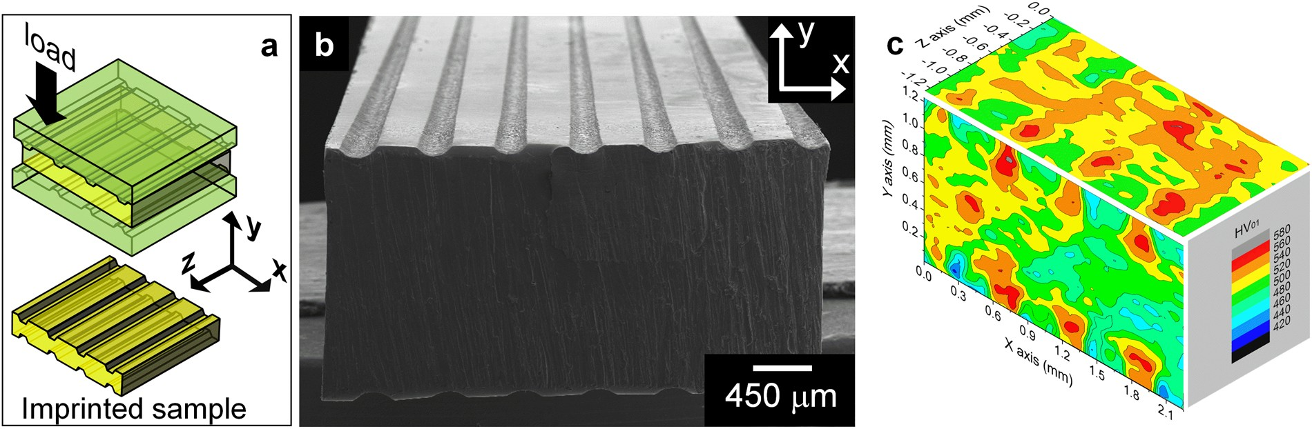 d0814a5ba777 Ductile bulk metallic glass by controlling structural heterogeneities
