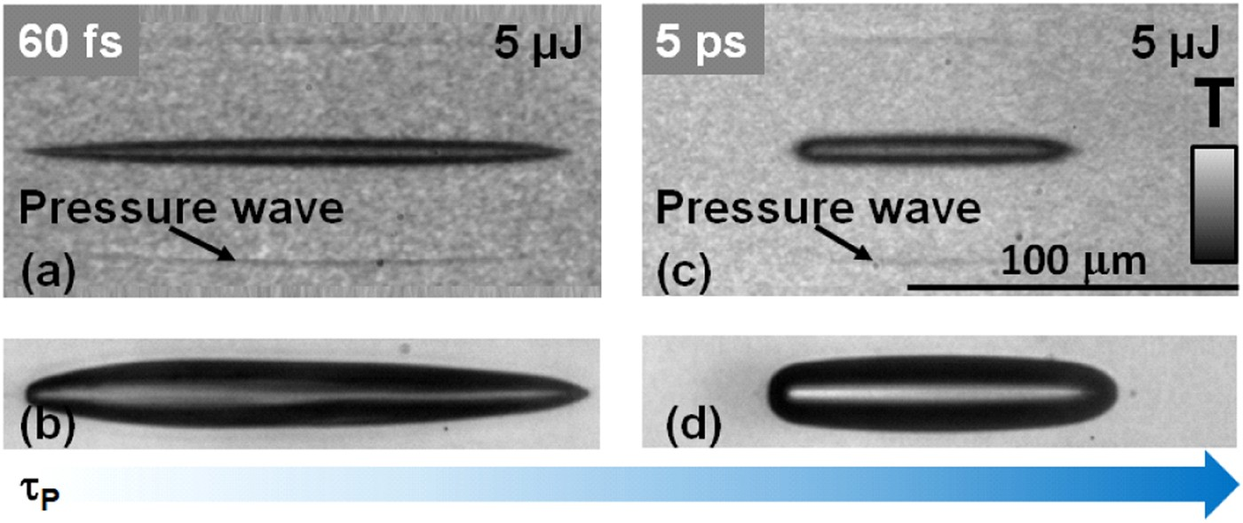 High fidelity visualization of multiscale dynamics of laser