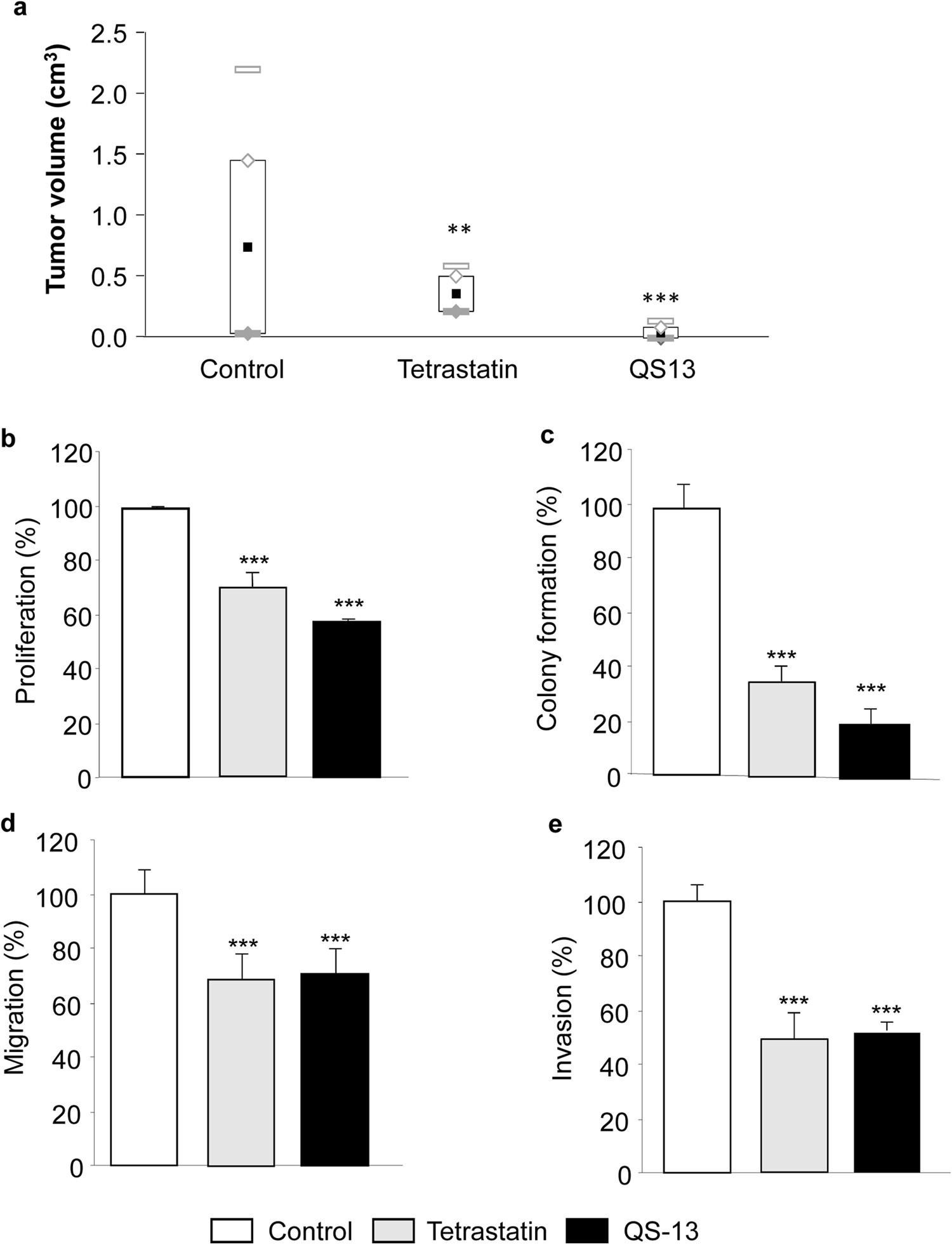 18202753ea182a Conformation-dependent binding of a Tetrastatin peptide to α v β 3 integrin  decreases melanoma progression through FAK PI 3 K Akt pathway inhibition ...