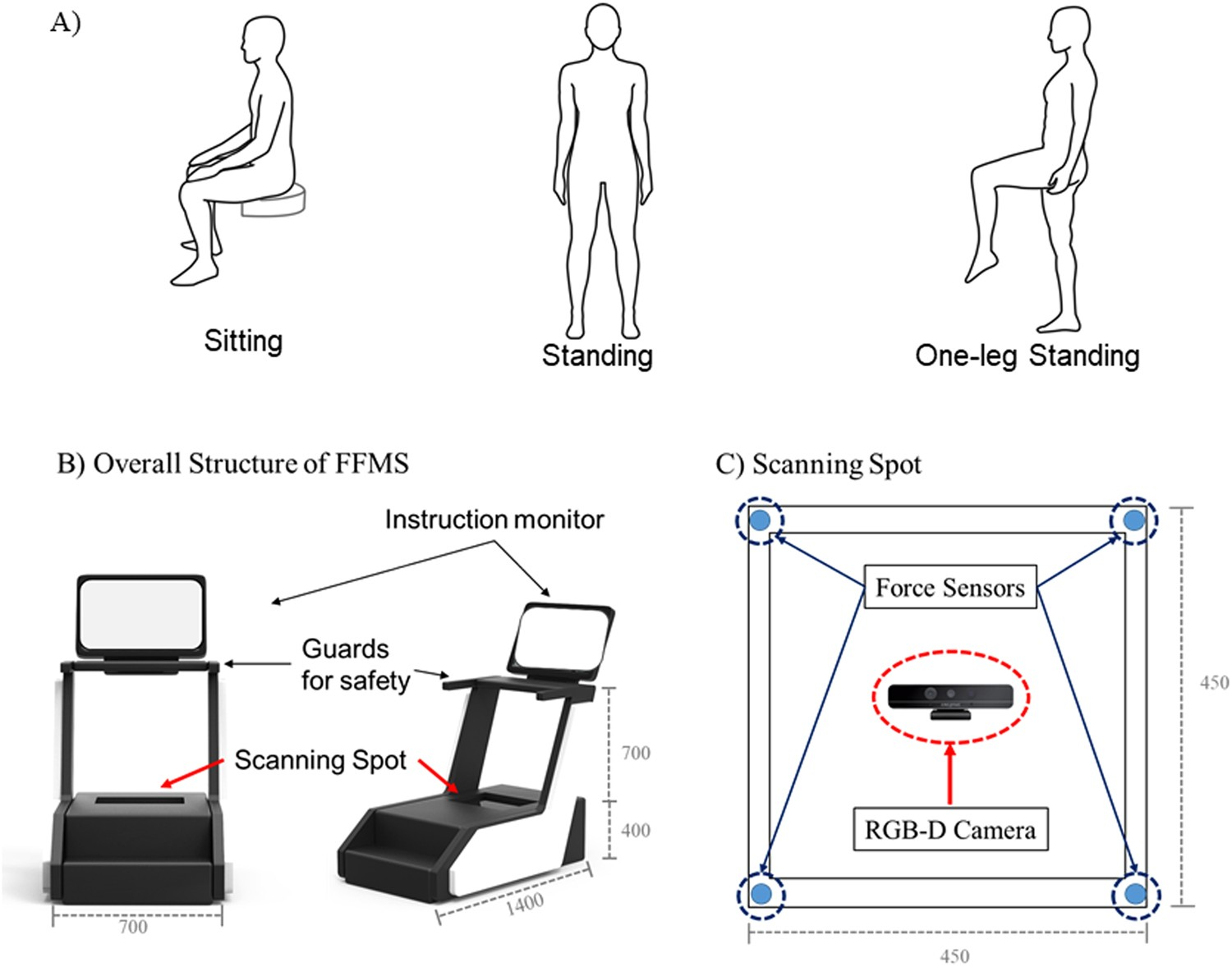 Gait Estimation from Anatomical Foot Parameters Measured by a Foot