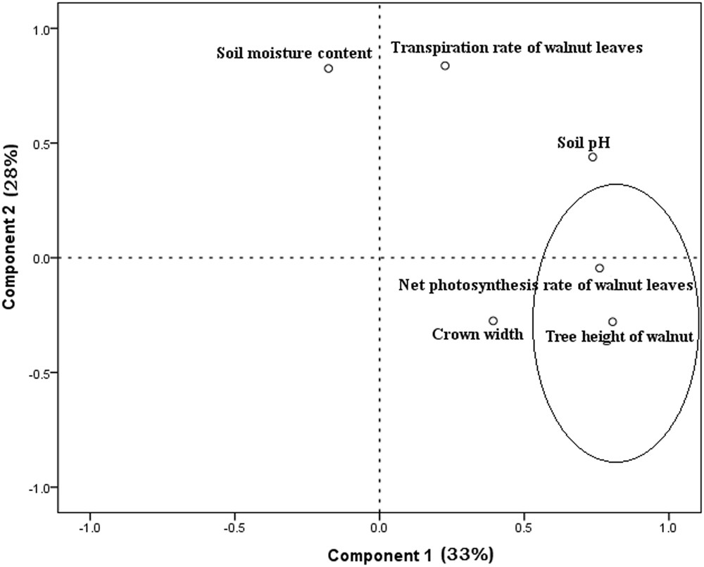 Optimization of growth and production parameters of walnut