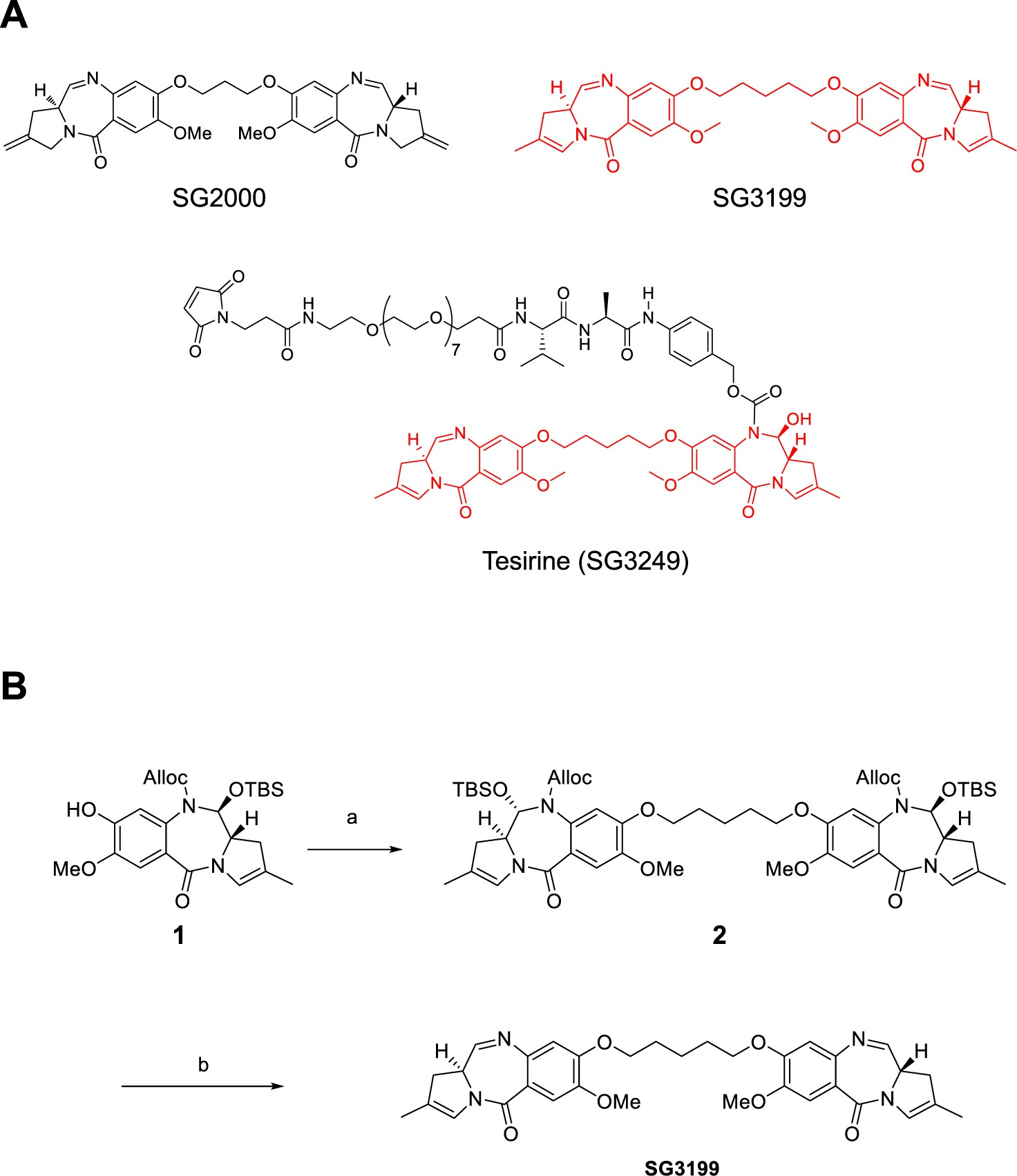 Pre-clinical pharmacology and mechanism of action of SG3199, the  pyrrolobenzodiazepine (PBD) dimer warhead component of antibody-drug  conjugate (ADC) ...