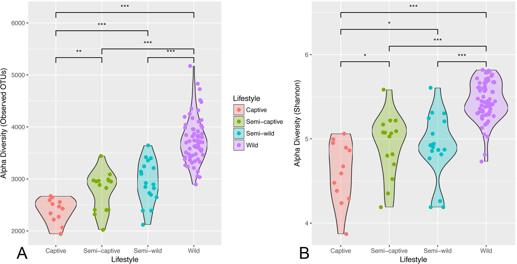 Associations Between Nutrition, Gut Microbiome, and Health in A