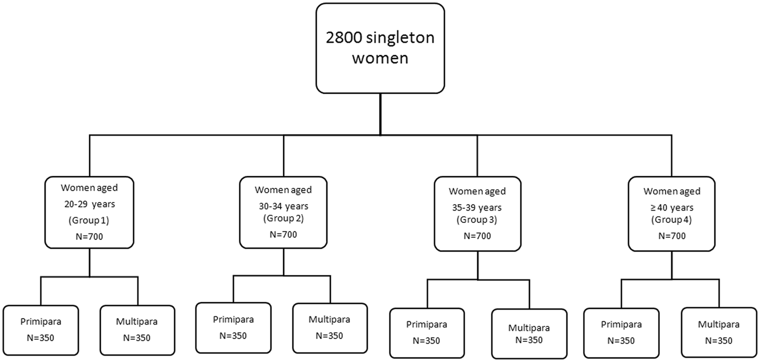 Pregnancy Outcomes in Women of Advanced Maternal Age: a