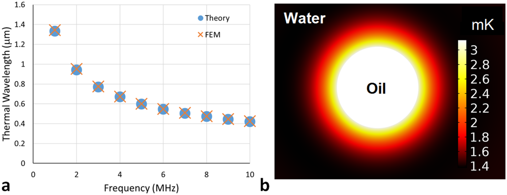 The Absorption Of Ultrasound In Emulsions Computational Modelling