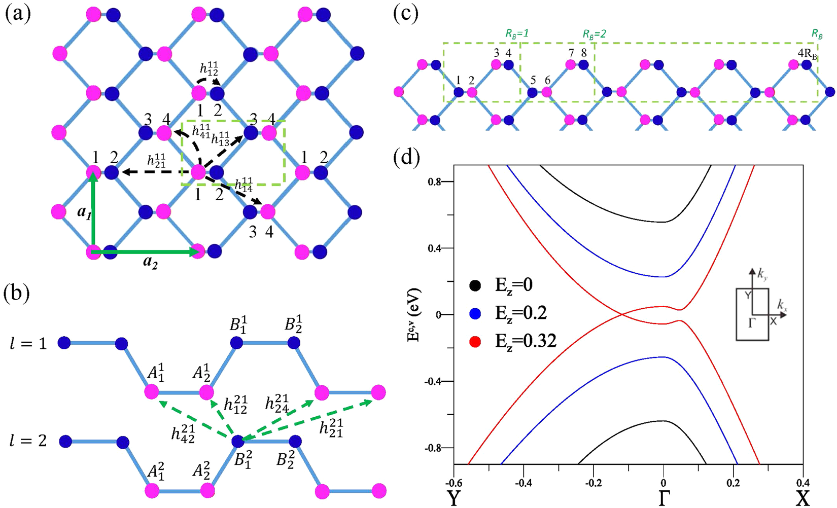The diverse magneto-optical selection rules in bilayer black
