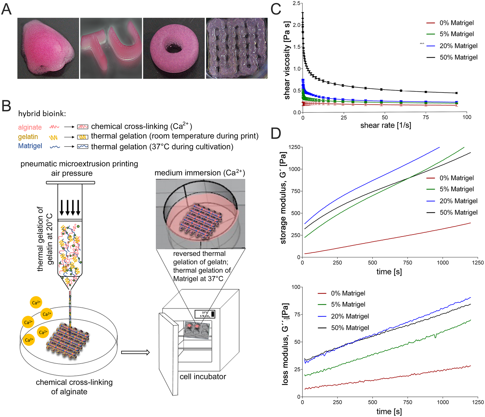 Optimization of cell-laden bioinks for 3D bioprinting and