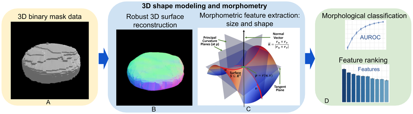 3D Shape Modeling for Cell Nuclear Morphological Analysis