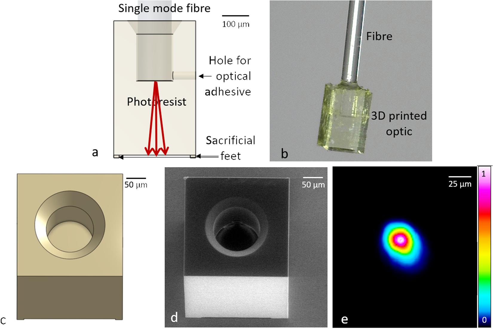 Two-photon polymerisation 3D printed freeform micro-optics
