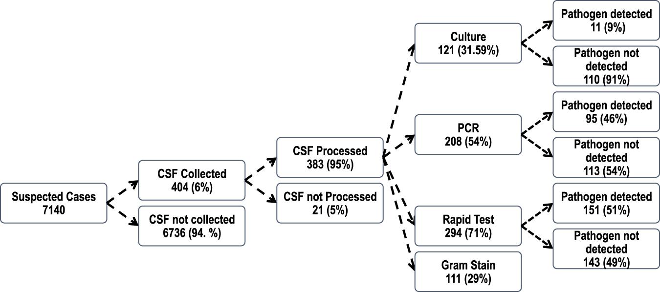 Meningococcus serogroup C clonal complex ST-10217 outbreak in