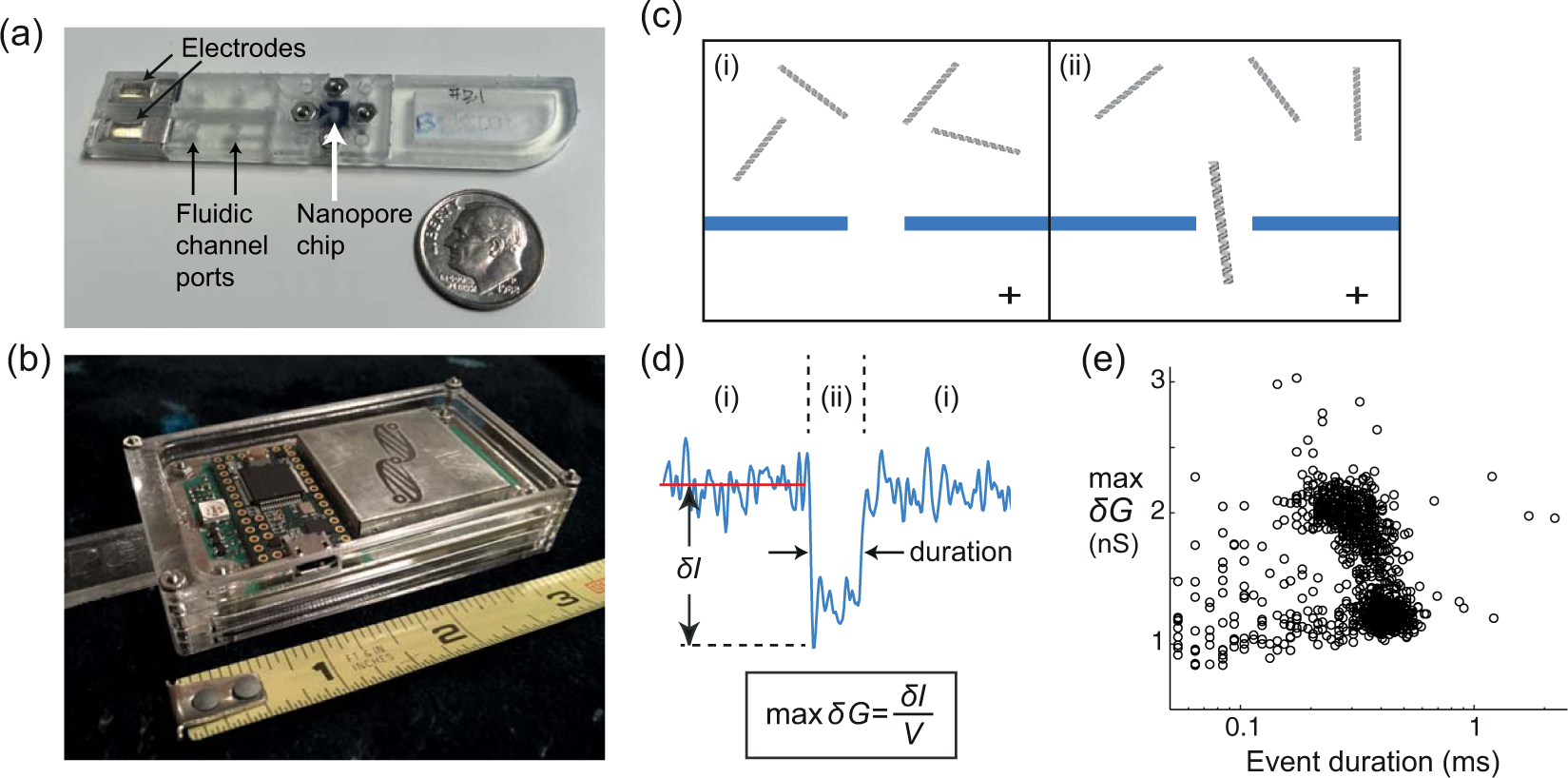 A handheld platform for target protein detection and
