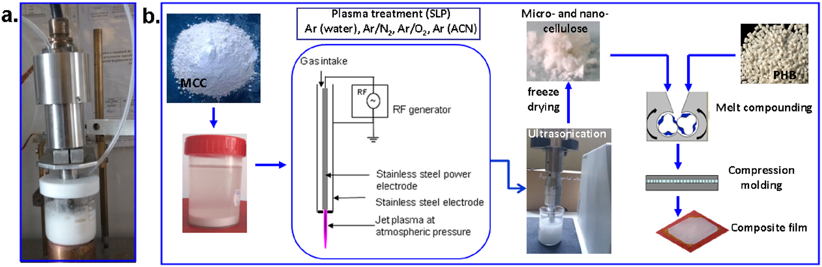 Remarkable Cellulose Defibrillation And Functionalization By Plasma In Liquid Gufa Illuminateatx Wiring Cloud Gufailluminateatxorg