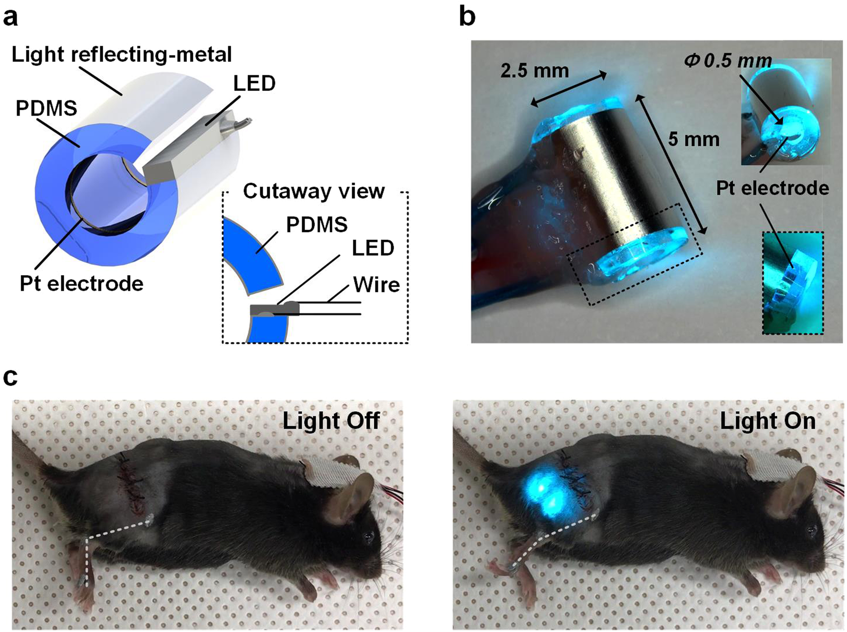 44df8479e3e Compact Optical Nerve Cuff Electrode for Simultaneous Neural Activity  Monitoring and Optogenetic Stimulation of Peripheral Nerves