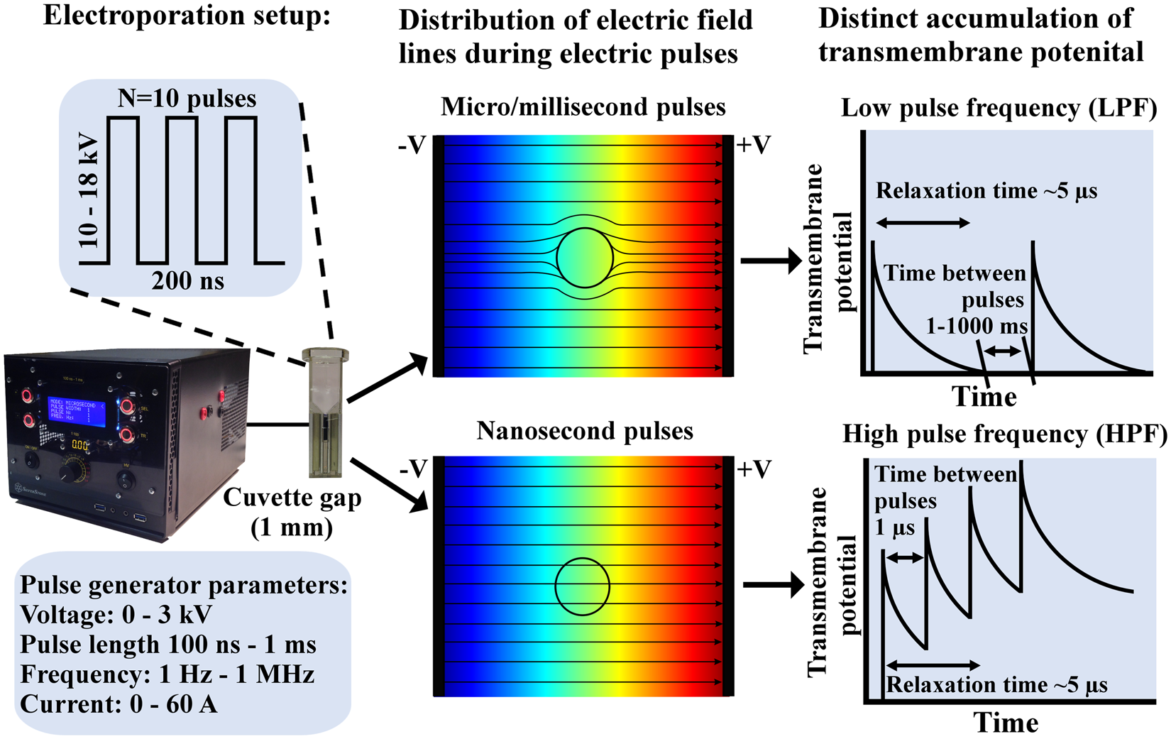 Nanosecond Range Electric Pulse Application As A Non Viral Gene Alternating Square Generator Delivery Method Proof Of Concept Scientific Reports
