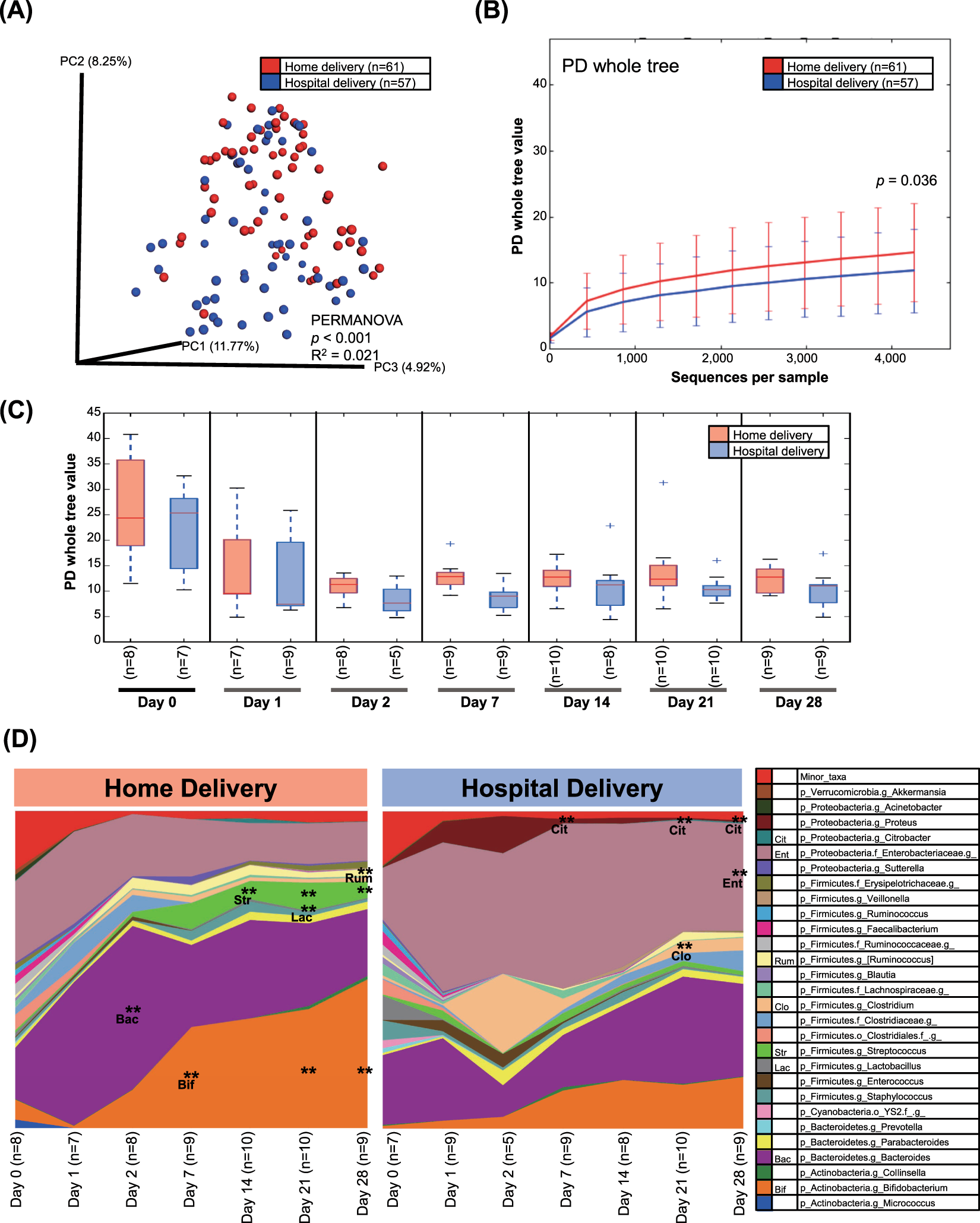 Differences in the fecal microbiota of neonates born at home or in