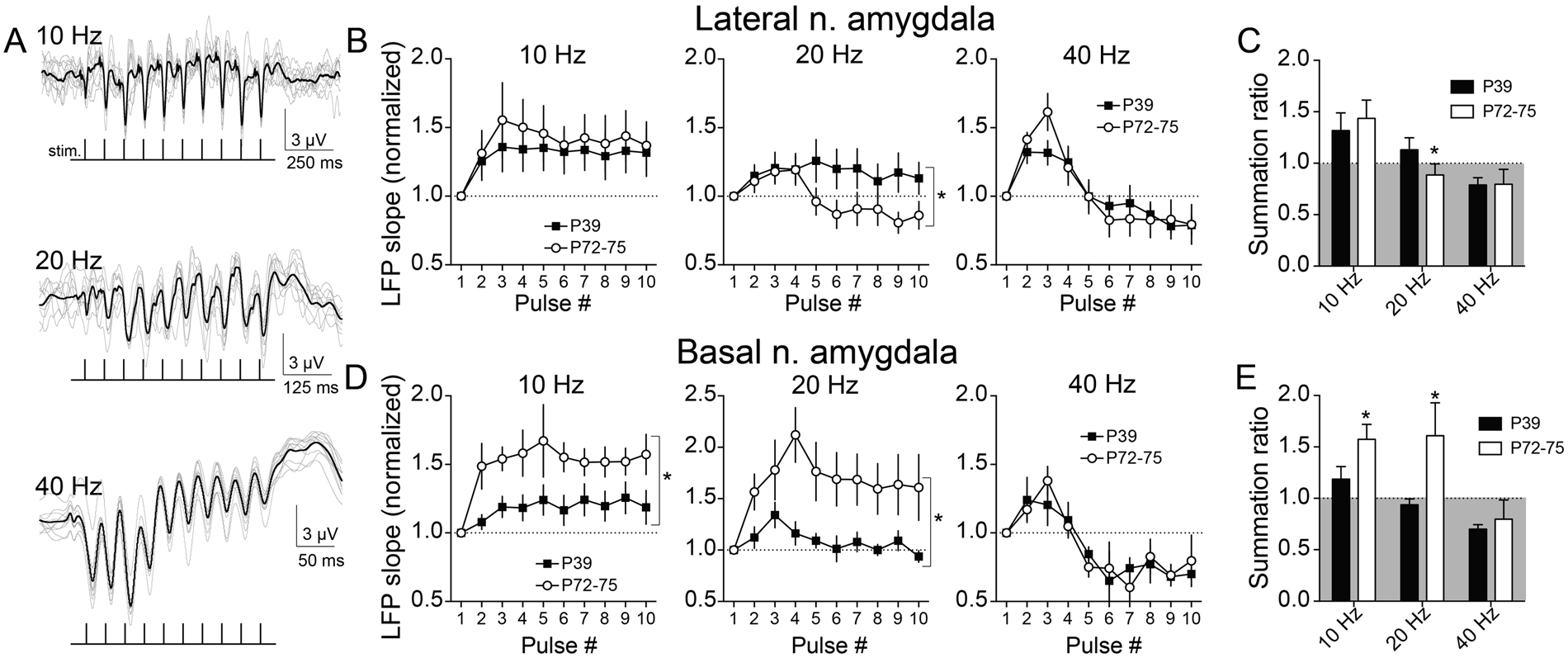 Limited Prefrontal Cortical Regulation Over The Basolateral Amygdala Physical Science 65a Series And Parallel Circuits Youtube In Adolescent Rats Scientific Reports
