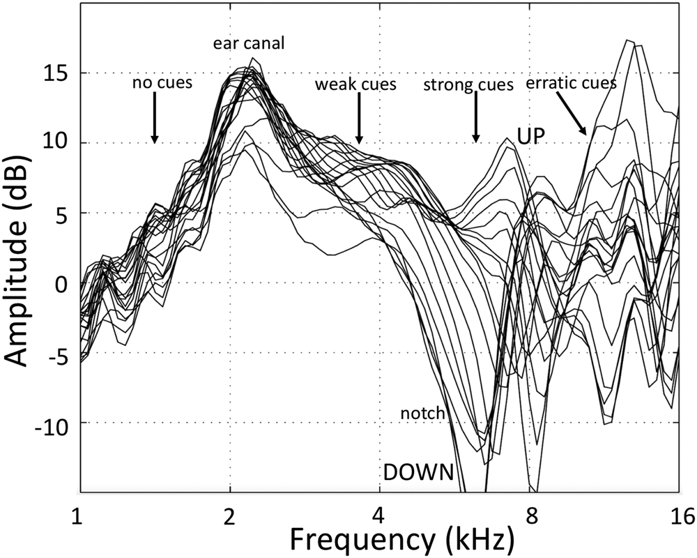 Learning to localise weakly-informative sound spectra with