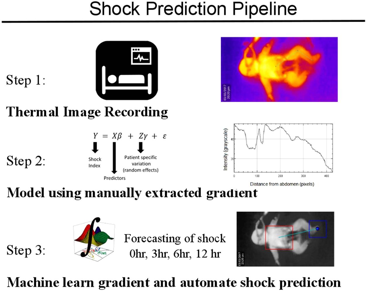 Predicting Hemodynamic Shock from Thermal Images using