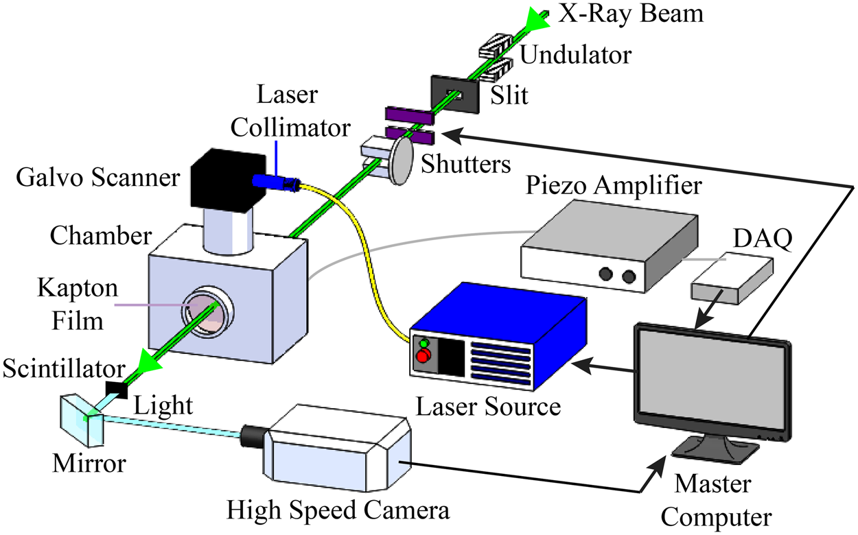 In - situ high-speed X-ray imaging of piezo-driven directed