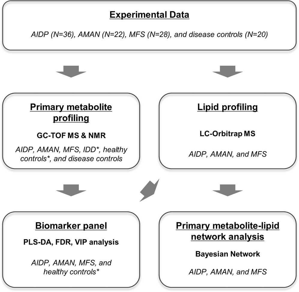 New Biomarker Panel Could Accelerate >> Integrative Metabolomics Reveals Unique Metabolic Traits In Guillain