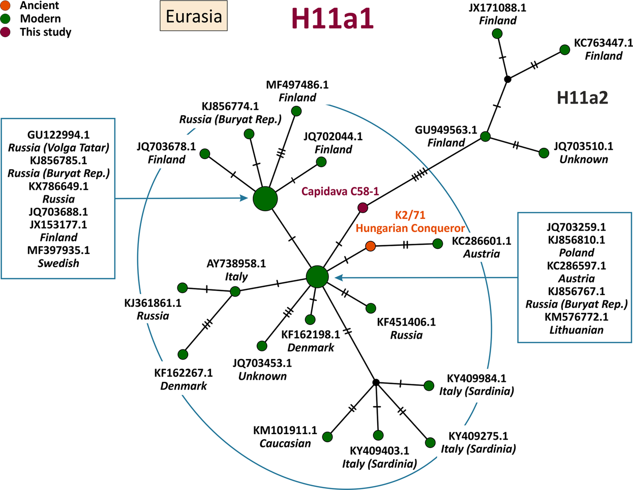 Mitochondrial ancestry of medieval individuals carelessly