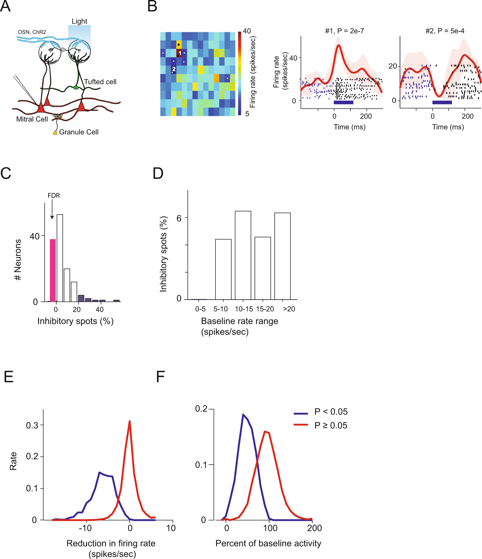 strong, weak and neuron type dependent lateral inhibition in the olfactory  bulb   scientific reports