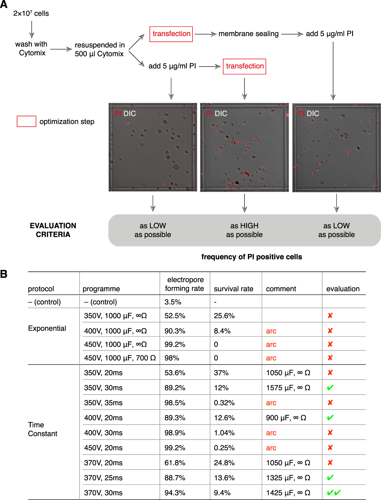 Successful Genetic Transfection of the Colonic Protistan Parasite