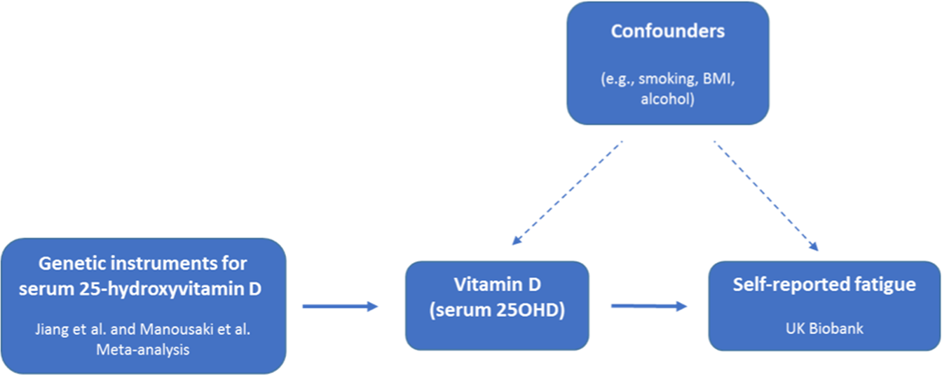 Investigating causality in the association between vitamin D