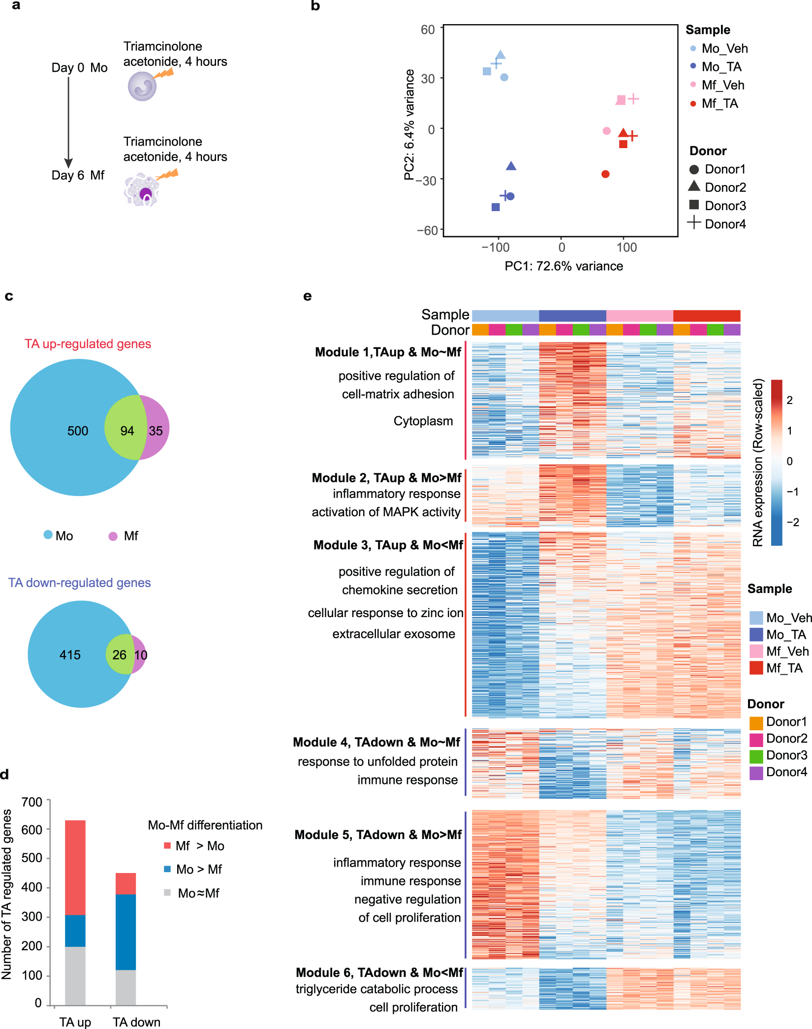 Extensive epigenomic integration of the glucocorticoid ... on