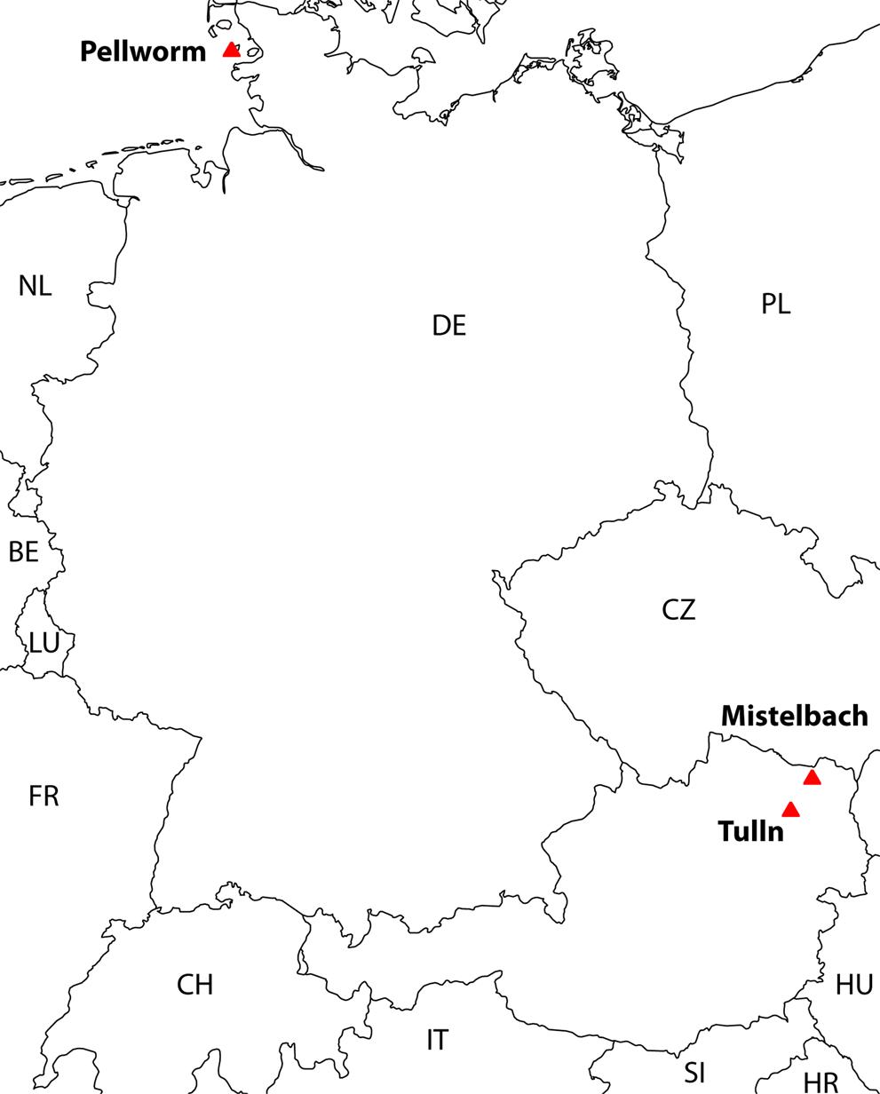 Gut microbiota of the European Brown Hare ( Lepus europaeus