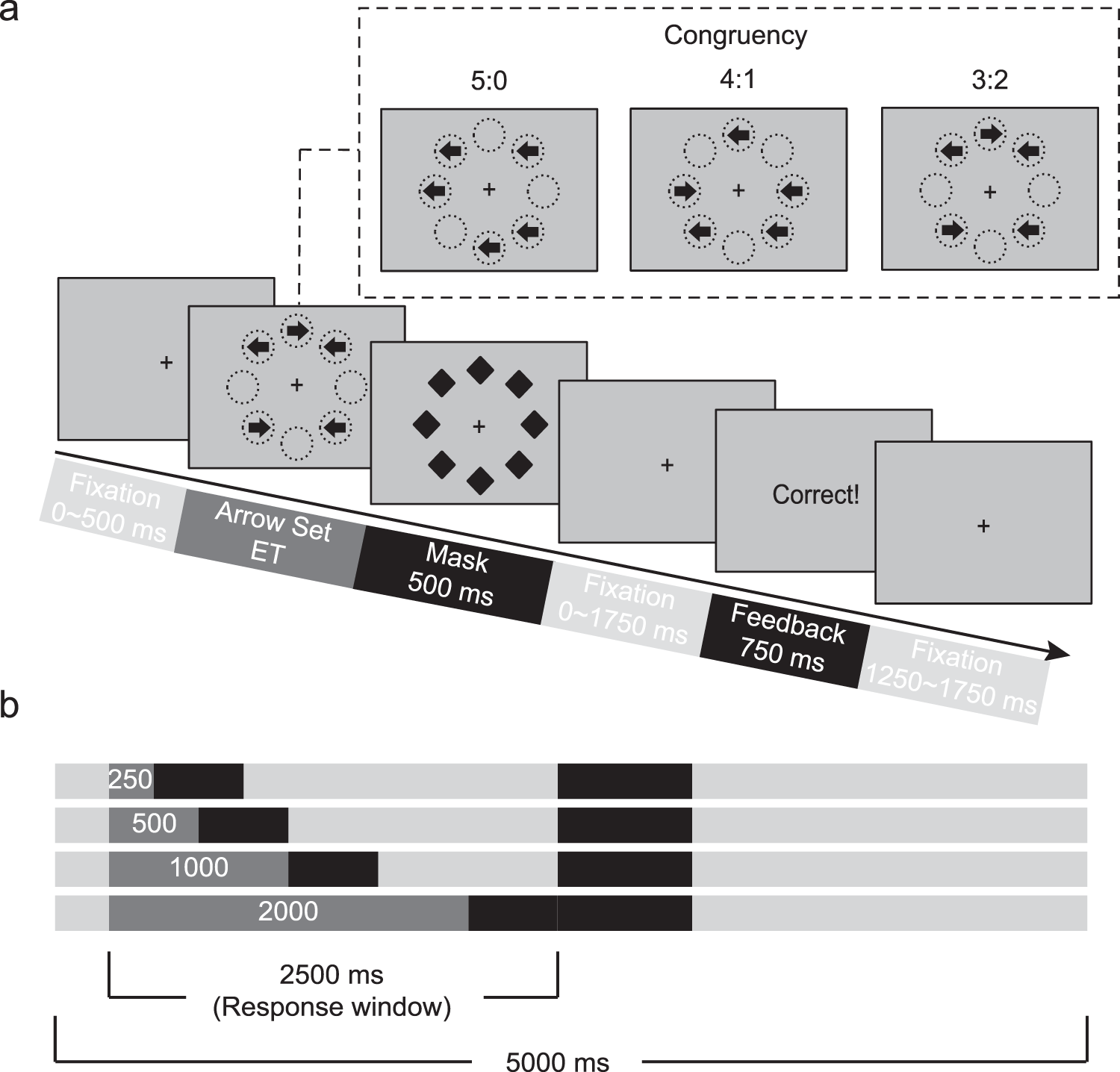 Testing a Cognitive Control Model of Human Intelligence