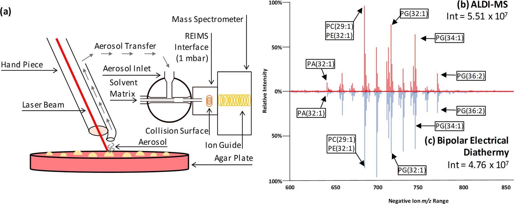 Utilisation of Ambient Laser Desorption Ionisation Mass Spectrometry
