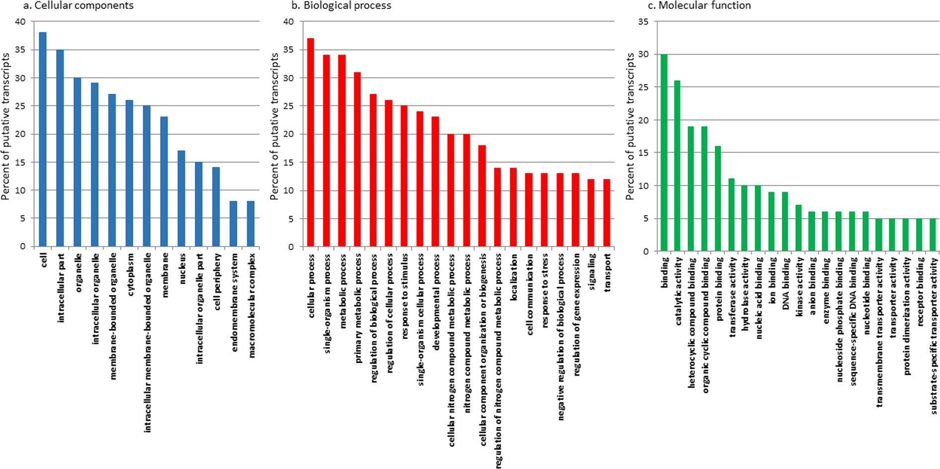 New molecular insights on the response of the green alga Tetraselmis