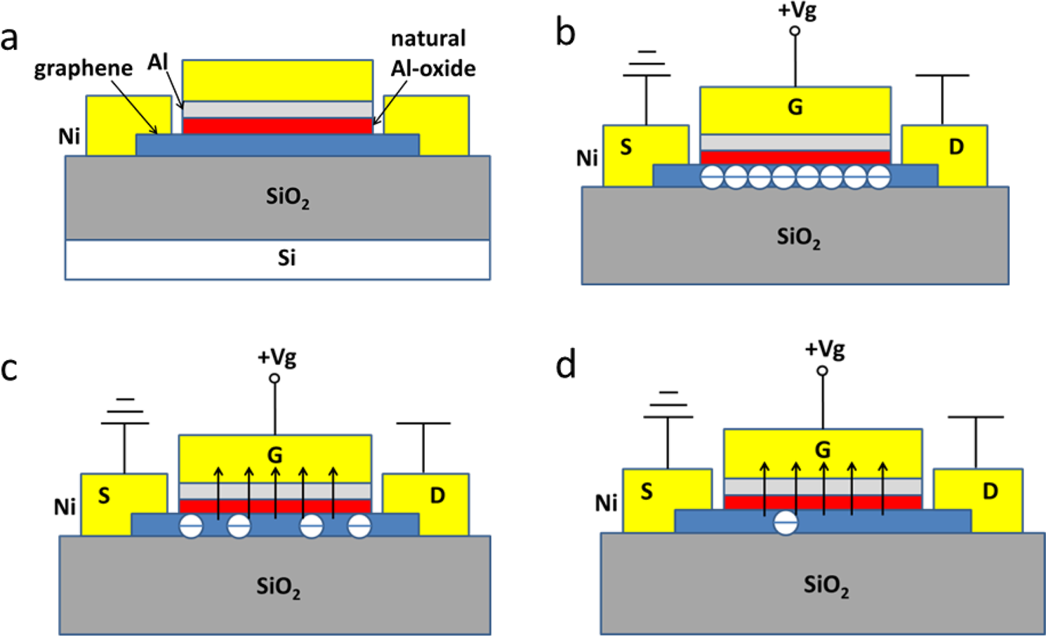 A Novel Graphene Metal Semi-Insulator Semiconductor